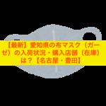 【最新】愛知県の布マスク(ガーゼ)の入荷状況・購入店舗(在庫)は?【名古屋・豊田】