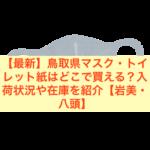 【最新】鳥取県マスク・トイレット紙はどこで買える?入荷状況や在庫を紹介【岩美・八頭】