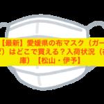 【最新】愛媛県の布マスク(ガーゼ)はどこで買える?入荷状況(在庫)【松山・伊予】